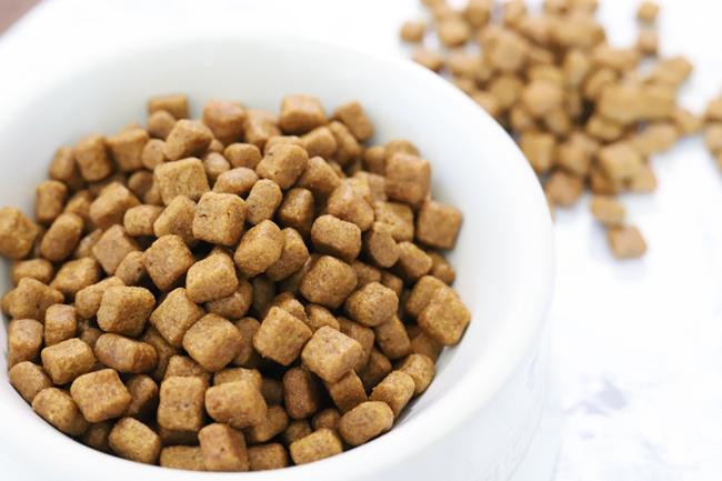 ペットの食費が高いか安いかは、 適切な食事で価値が決まります!