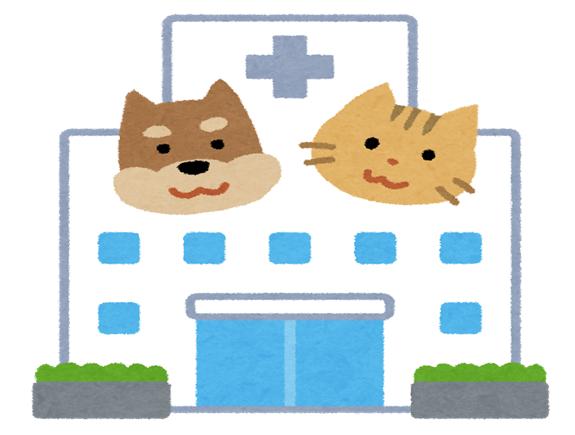 なぜ、費用は動物病院によって差があるの?